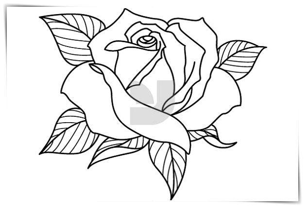 Pin En Imágenes De Flores Para Colorear