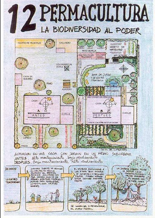 permacultura 12