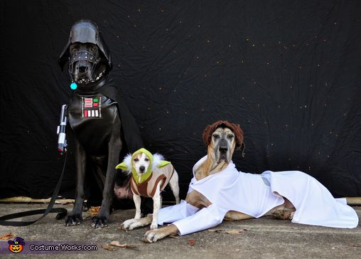 #StarWars: The Canines Strike Back | I might need to get my friends to make these #dog #Halloween costumes with me!
