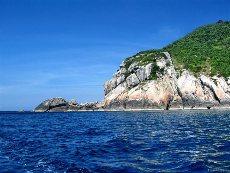 Cham Island Half day