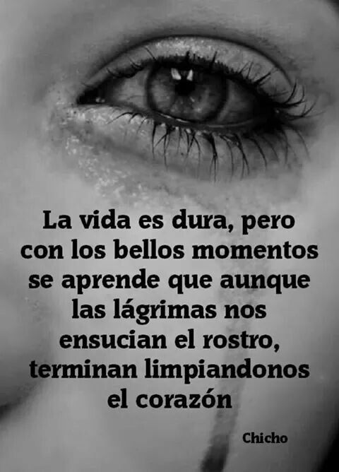 17 best images about frasess on pinterest no se for Con que limpiar el marmol