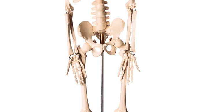 Diferencias entre el plano sagital y el plano medio sagital. Si quieres describir la ubicación de tu hígado, un modo de hacerlo podría ser la utilización de planos sagitales. Los planos sagital y medio sagital sirven como mapas para el cuerpo humano y sus partes. Las ubicaciones de los órganos y otras partes del cuerpo, por lo general están ilustradas haciendo referencia particularmente a los planos ...