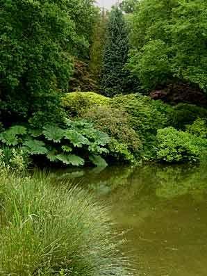 Les jardins de Kerdalo en juin (2009) - Arrosoirs et Sécateurs