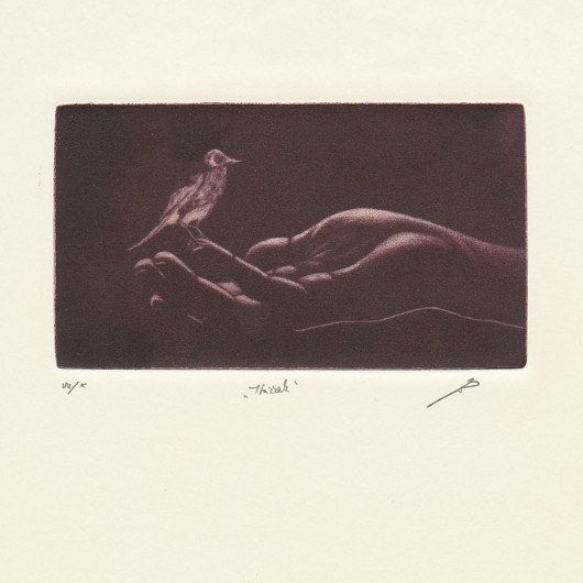 https://flic.kr/p/qaUzSC | Little Bird - Jan Cernos | PostArte.com card - Mezzotint