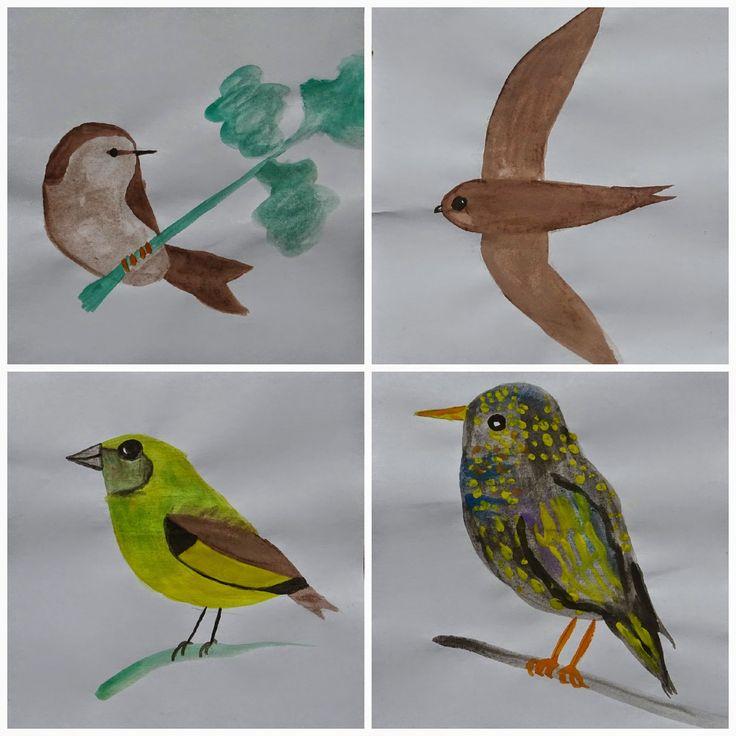 im Uhrzeigersinn von oben links startend:  der Zilpzalp, der Mauersegler, der Star und der Grünfink