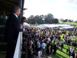 Come to Mount Gambier and get a Grandstand view of our racetrack