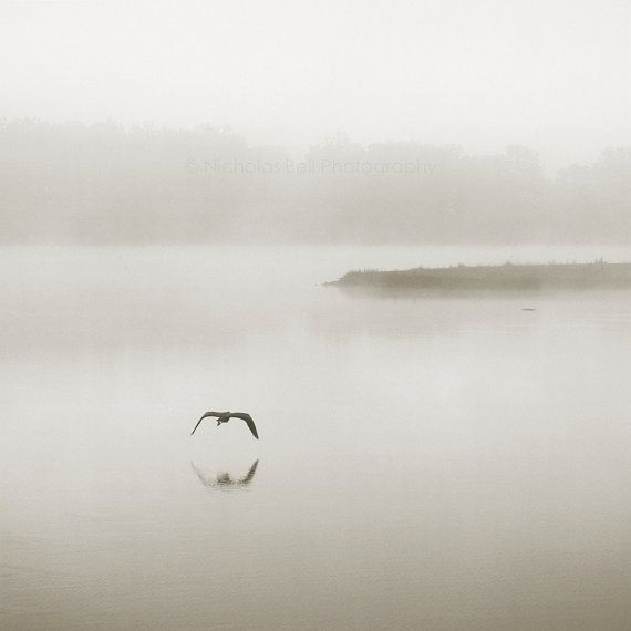 24 best images about photo landscape minimalist on for Art minimal facebook