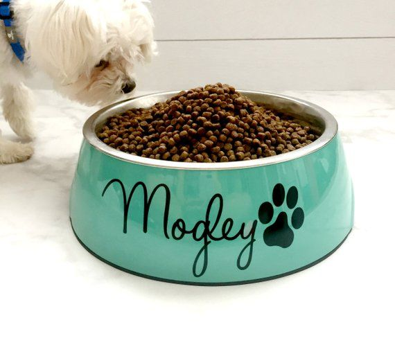 Personalized Dog Bowl Small Medium Or Large Personalized