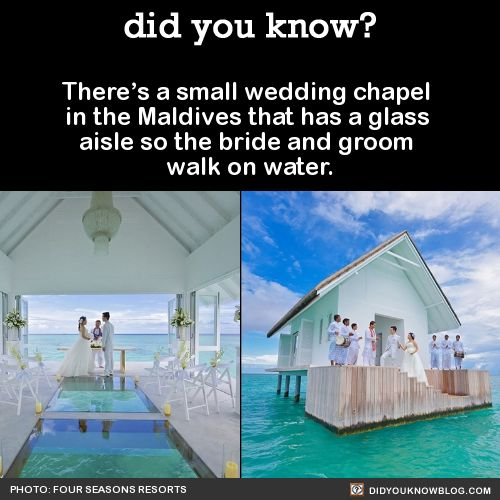 There's a small wedding chapel in the Maldives that has a glass aisle so the bride and groom walk on water.Source
