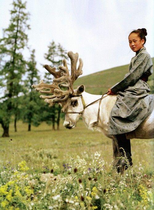 Mongolian girl riding a reindeer