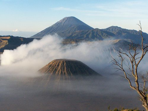 Bromo Tours - EastJava - Trekking Sunrise.Area Mount Bromo Tours in East Java, Indonesia, is a challenging place, and amazing. Traveling in Bromo national park, covering an area of about 50,73 hectares, which is a high plateau, in the form of mountains and forests, in the district of Malang, Pasuruan, Probolinggo, and Lumajang, East Java.