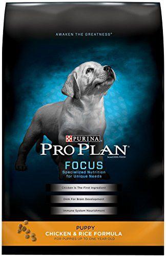 Purina Pro Plan Focus Puppy Dry Dog Food  #Puppy #dog #K #cat #pet #saleondeals