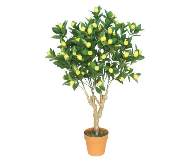 artificial lemon tree spacegreen