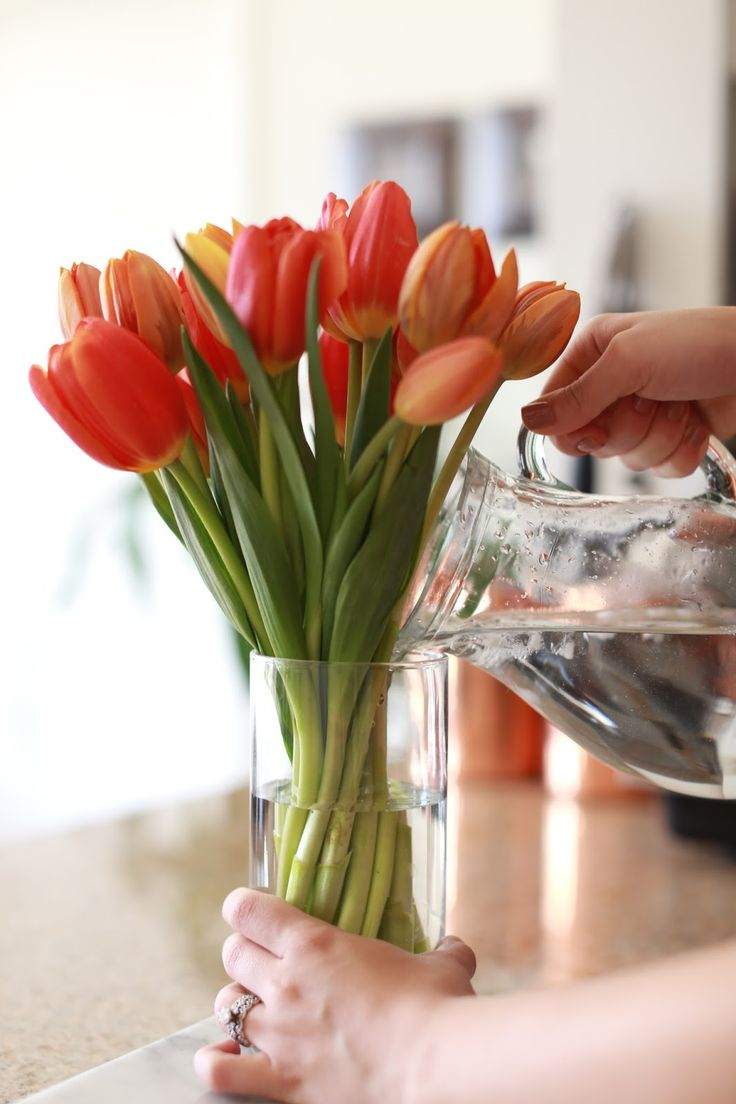 Easy Tulip Arrangement  Rachel Talbott | Cut off all leaves, piles  straight, twist