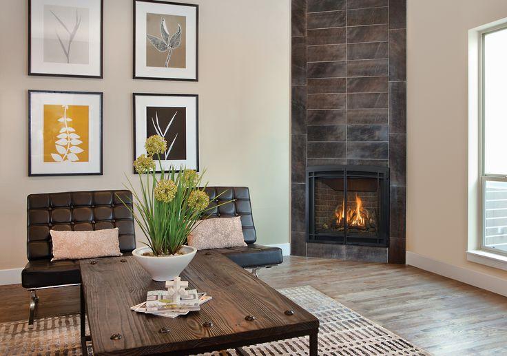 Elegant Basement Fireplace Venting