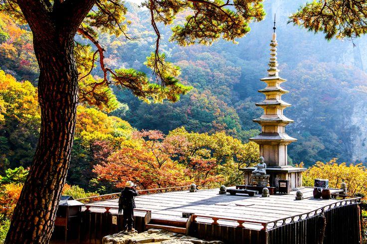 청량산의 가장 아름다운 자락에 위치한 영험한 기도처, 경북 봉화 청량사탑