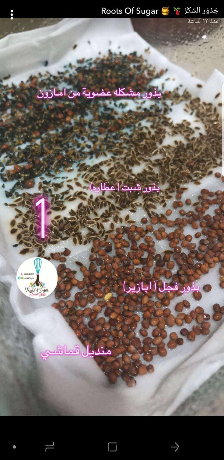 Pin By Aman On تغذية علاجية المعدة بيت الداء و الدواء توعية Health Treatment Roots