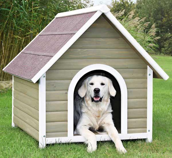 29 Best Dog Houses Images On Pinterest Dog Houses
