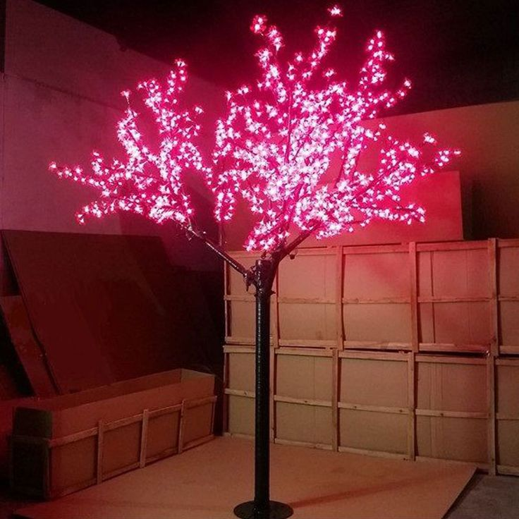 25 Best Ideas About Outdoor Christmas Trees On Pinterest: 25+ Best Ideas About Outdoor Tree Lighting On Pinterest