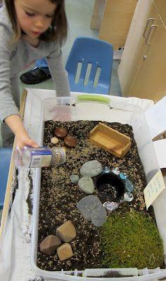 """Snail or """"Fairy"""" garden, Exploring Life (Reggio)"""