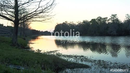 """Peaceful Lake in the Afternoon"" Stock footage and royalty-free videos on Fotolia.com - Vid 143085377"