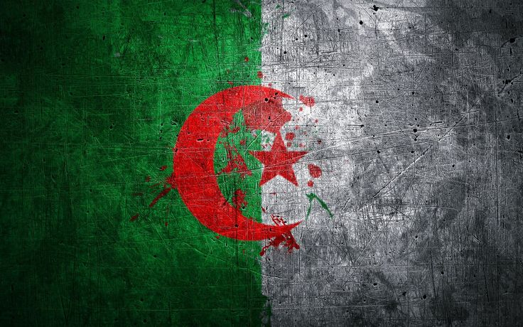 Algeria Flag Wallpaper | Free Travel wallpapers