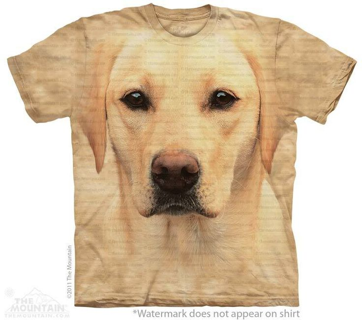big face yellow lab portrait - Click image to see hundreds of different animal t-shirts #themountaintees