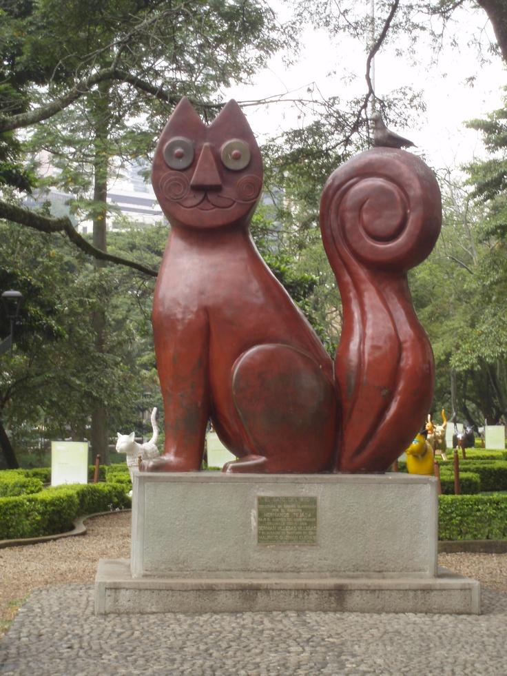 El Gato Del Rio - Cali Colombia