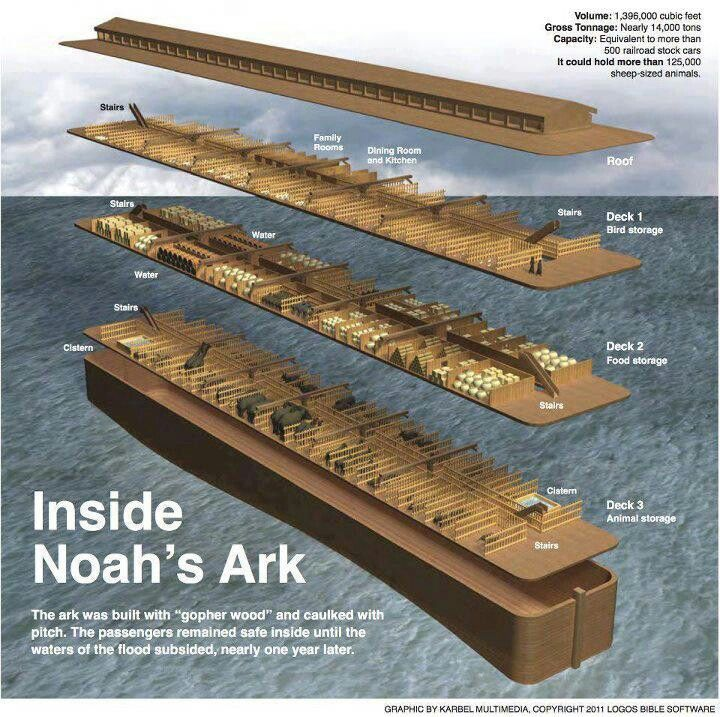 Noah's Ark and the Flood - Bible Story