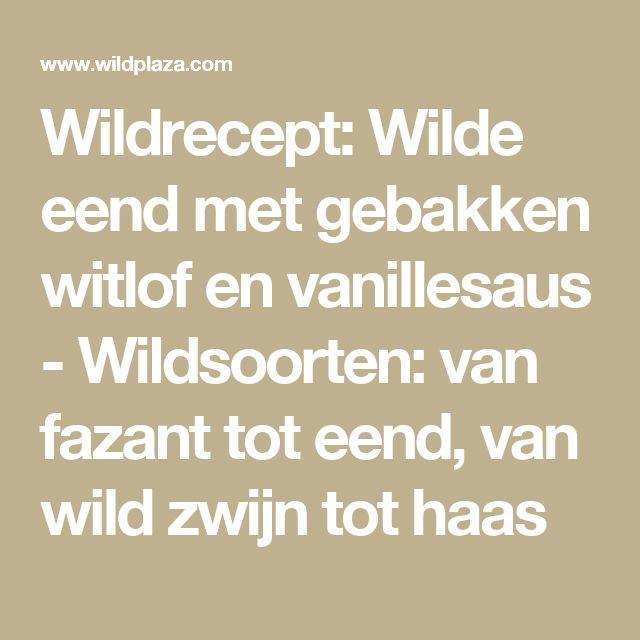 Wildrecept: Wilde eend met gebakken witlof en vanillesaus - Wildsoorten: van fazant tot eend, van wild zwijn tot haas