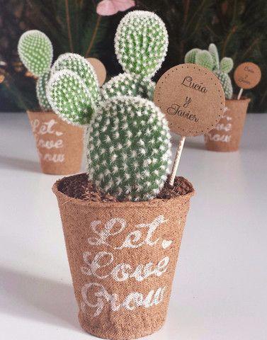detalles-invitados-cactus-crasas-regalo-ecologico-boda