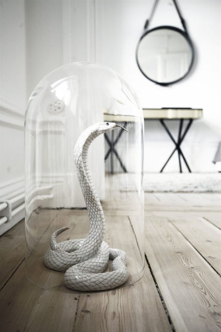 Porcelain Cobra. Södermalm apartment