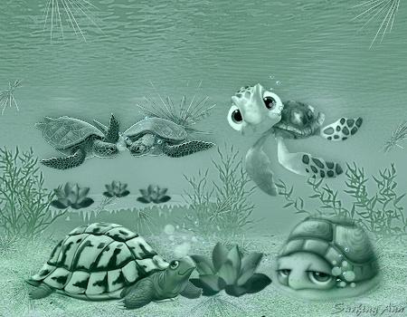 Schildpadden