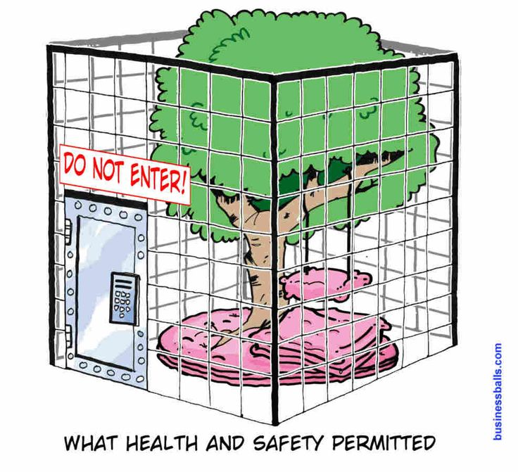 treeswing - what health and safety permitted