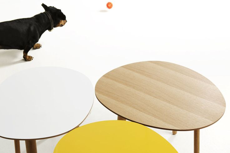 Morris coffee tables model 2 in white and yellow, model 6 in oak