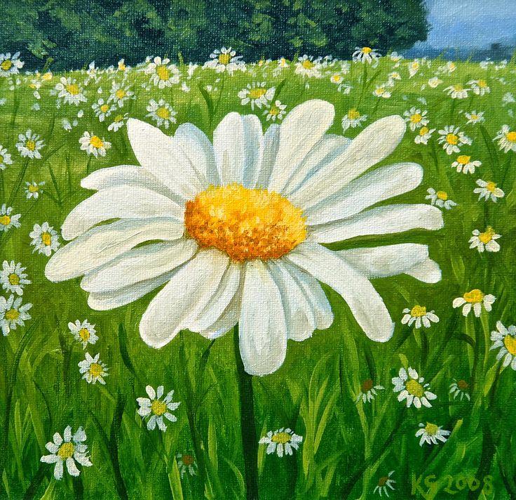 Daisy Meadow Painting  - Daisy Meadow Fine Art Print