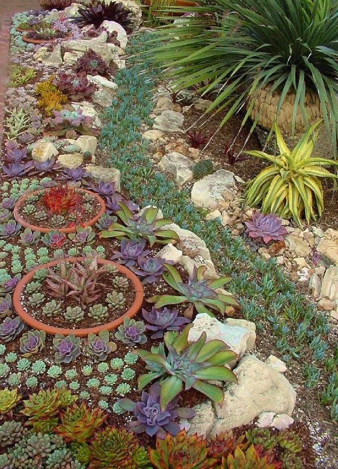 I like this look incorporating terra cotta bowls into the landscape