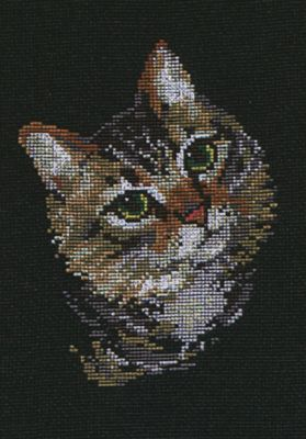Colourful Cat Cross Stitch Kit By Riolis