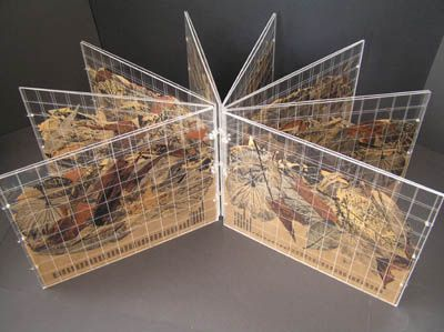 A Drought Document by Helen Malone. 2007. Book sculpture. Double perspex pages engraved with a graph. The book records decaying dead dying curling and crumbling leaves and grasses by hand printing in relief ink on assorted papers. Cut out prints mounted and pressed between the pages of the book. Bound with fishing line. Height 23 cm x 30 cm x 5 cm.