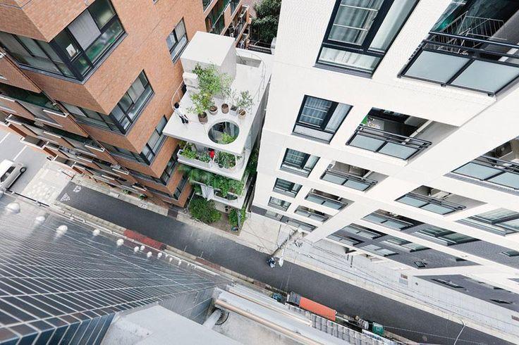 ryue nishizawa: house & garden