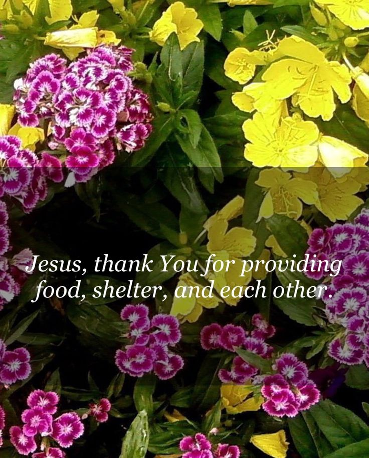 Bless the Lord, we forget not your Benefits!!! Psalm 103:2
