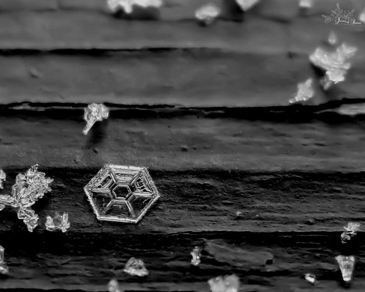 """In a galaxy far, far, away..."" #snowflake #macro #photography #winter #nature #cold #frozen #beautiful #ice"