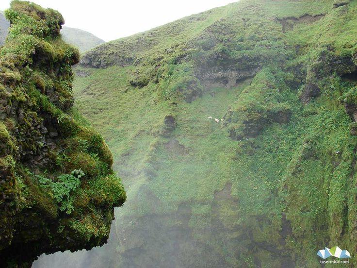 Iceland - Photo Juan Jesús
