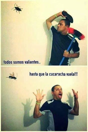 La Cucaracha...    #humor #chiste #carteles #funny #jokes #cucaracha #susto