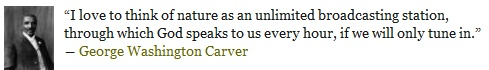 George Washington Carver quote