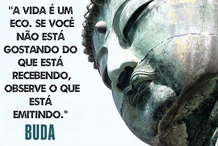 """""""A vida é um eco, se você não está gostando do que está recebendo, observe o que está emitindo.""""  Buda"""