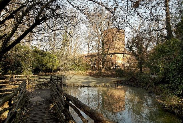 Oasi d'inverno  Una veduta del Castello dell'Oasi di Sant'Alessio (PV) ripresa dallo stagno dei cormorani