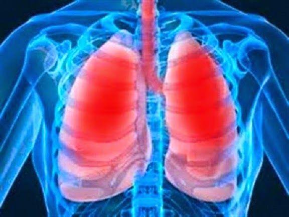 Xarope que limpa aparelho respiratório e combate gripe, rinite e sinusite | Cura pela Natureza.com.br