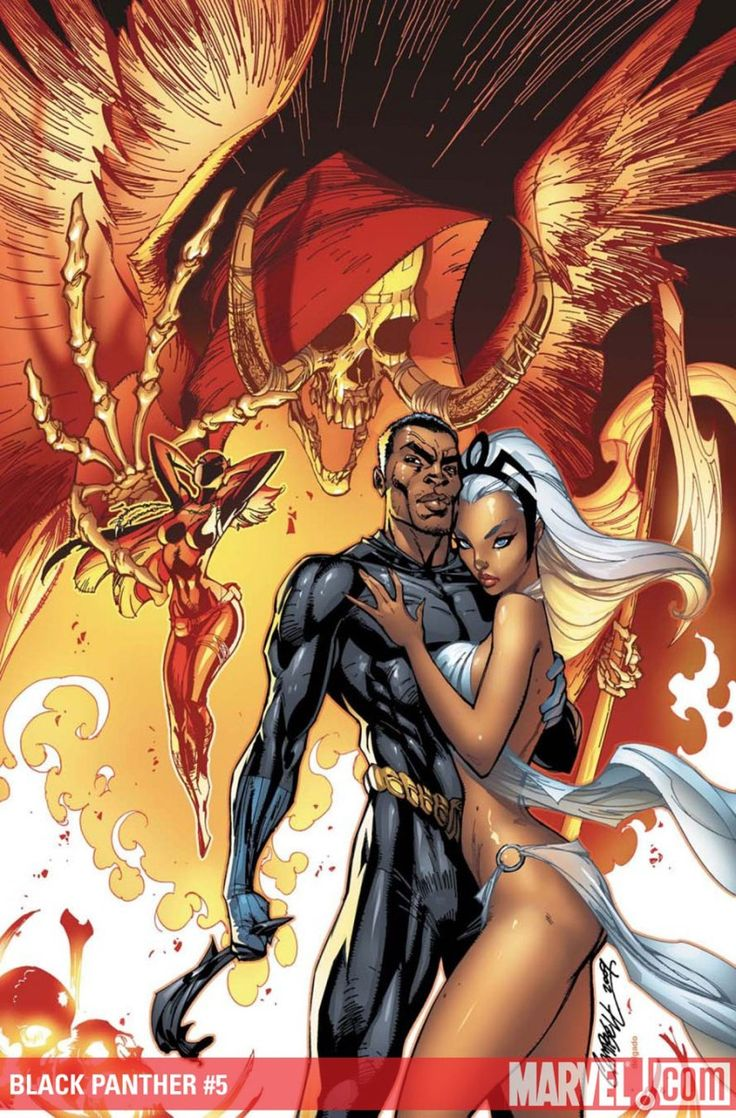 "j scott campbell's ""Storm and Black Panther"""