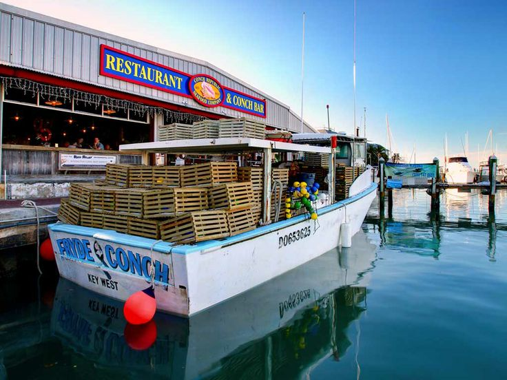 Conch Republic Seafood Company- this place is sooo good!